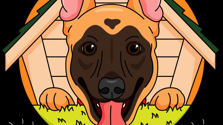 פנסיון ביתי לכלבים – הבית של סאם | מושב שתולים